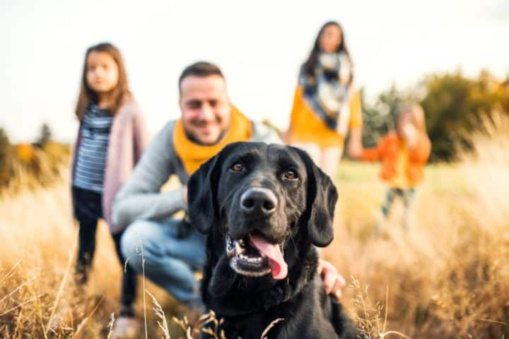 Dog with family of four husband wife two kids