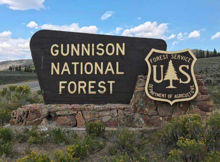 Gunnison National Forest sign