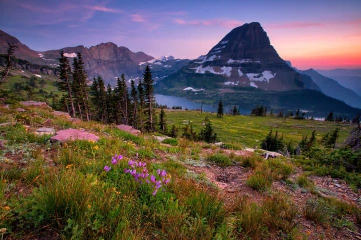Hidden Lake Trail Logan Pass Glacier National Park