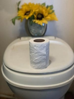 Toilet paper roll on top of RV toilet